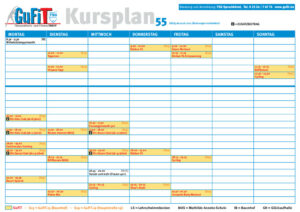 thumbnail of TSG-Kursplan55_4c